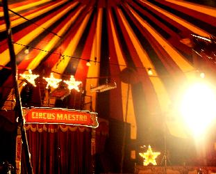 Night At the Circus